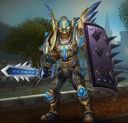 Level 90 Male Human Paladin Wow Accounts for sale