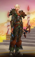 Level 90 Female Blood Elf Hunter Wow Accounts for sale