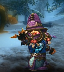 Level 100 Male Gnome Mage Wow Accounts for sale