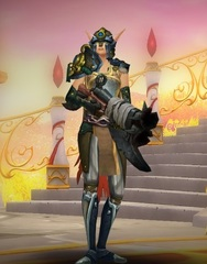Level 100 Female Blood Elf Hunter Wow Accounts for sale
