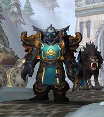 Cheap WoW Accounts Level 80 Male Dwarf Hunter (PvP)