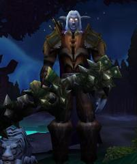 Cheap WoW Accounts Level 80 Male Night Elf Hunter (PvP)