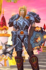 Cheap WoW Accounts Level 85 Male Blood Elf Paladin (PvP)