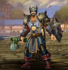 Cheap WoW Accounts Level 85 Male Human Paladin (PvE)