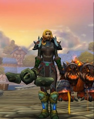 Cheap WoW Accounts Level 85 Female Human Hunter (PvP)