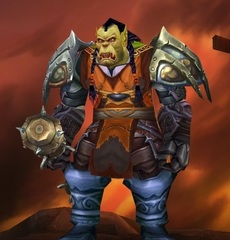 Cheap WoW Accounts Level 81 Male Orc Shaman