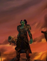 Cheap WoW Accounts Level 80 Female Orc Hunter