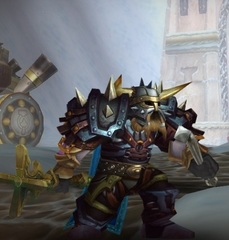 Cheap WoW Accounts Level 81 Male Dwarf Paladin