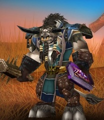 Cheap WoW Accounts Level 80 Male Tauren Druid