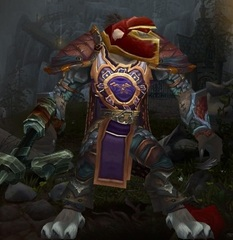 Cheap WoW Accounts Level 81 Male Worgen Hunter