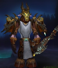 Cheap WoW Accounts Level 85 Male Night Elf Hunter