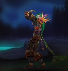 Cheap WoW Accounts Level 85 Female Night Elf Hunter