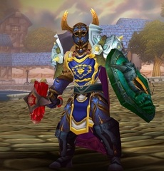 Cheap WoW Accounts Level 80 Male Human Paladin