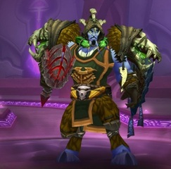 Cheap WoW Accounts Level 85 Male Draenei Shaman