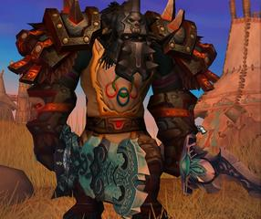 Cheap WoW Accounts Level 80 Male Tauren Warrior