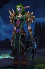 Buying WoW Account Level 85 Female Night Elf Hunter