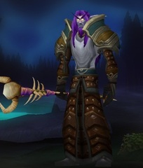 Buying WoW Account Level 82 Male Night Elf Druid