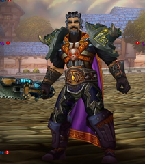 Buying WoW Account Level 81 Male Human Warrior