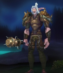 Cheap WoW Accounts Level 84 Male Night Elf Druid