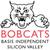 Basis bobcats