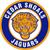 Cedar shoals mascot