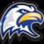 2012 sfms1 eagle head  yellow beak
