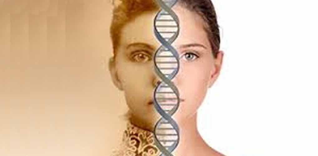 geneology-large