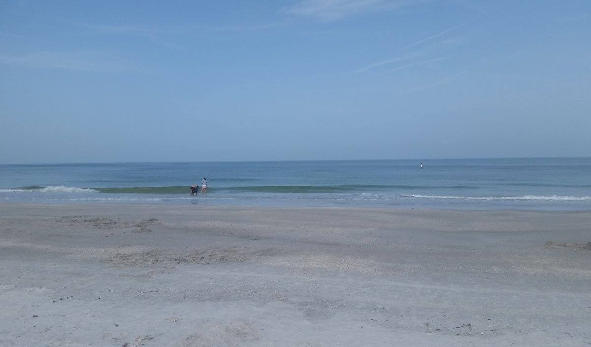 Surf Report: <p>No waves in sight, just amazing beach weather</p>