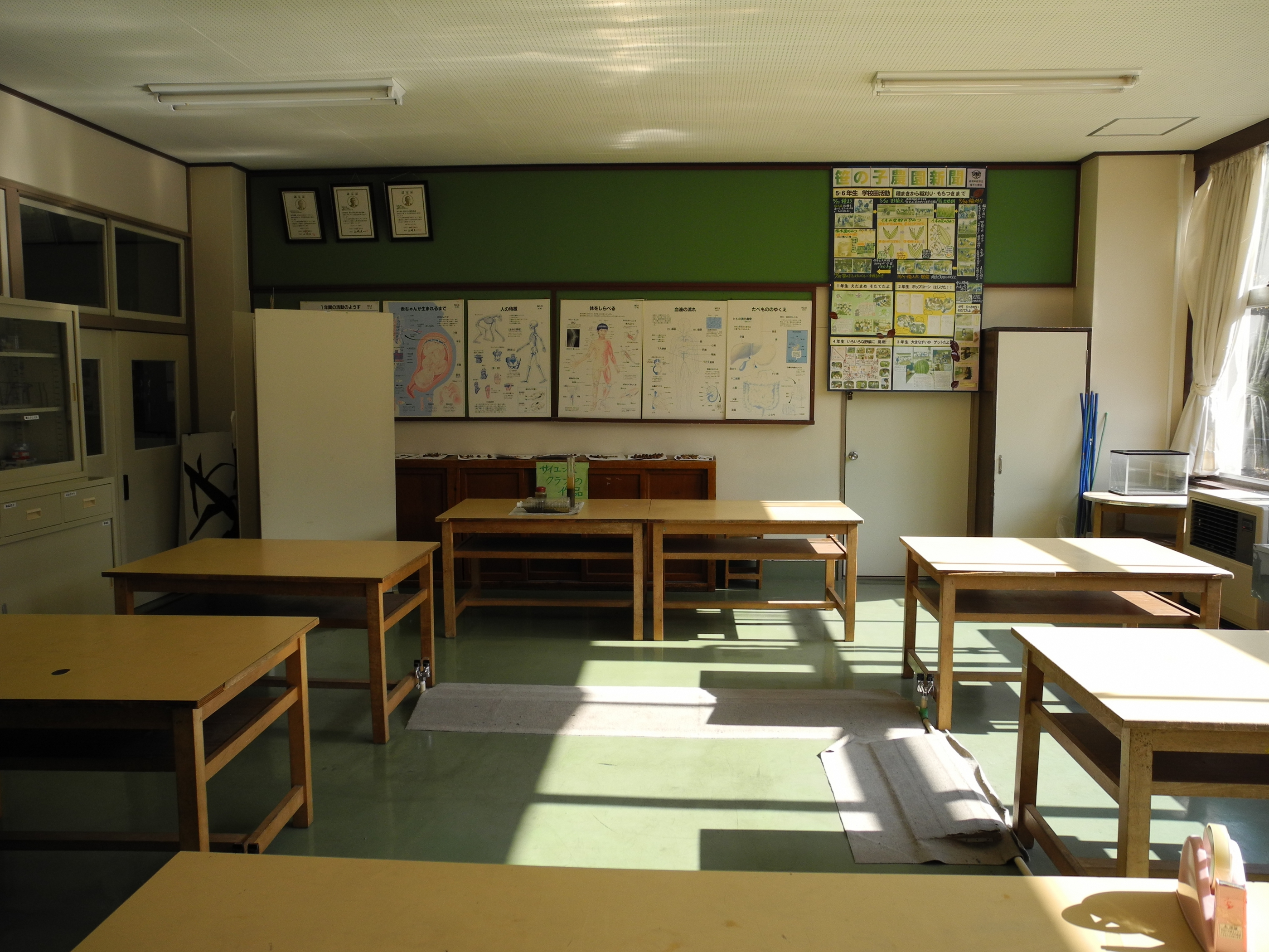 Jinego elementary school science room back