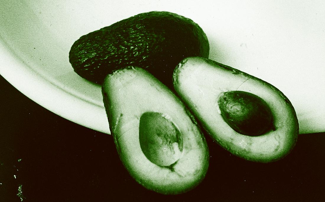 Avocados 2