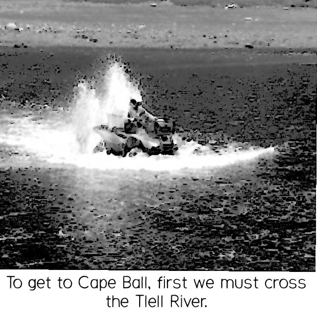 A Night at Cape Ball