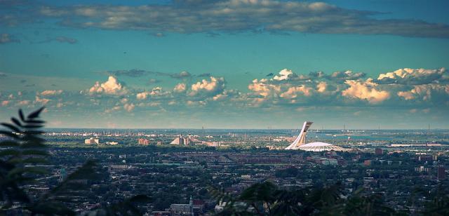 Montreal TV