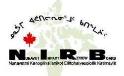 The NIRB Process (Nunavut Impact Review Board). baffinlandwitness.com May 16, 2012