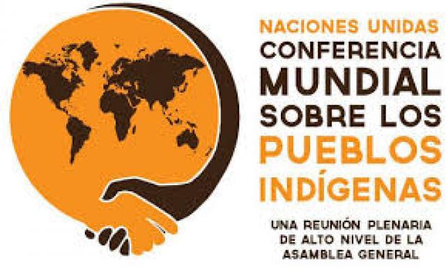 Conferencia Mundial sobre los Pueblos Indigenas