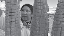 Link to: The Traditional Foods of the Inuit Lesson