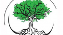 Link to: Árbol en français/Árbol in English
