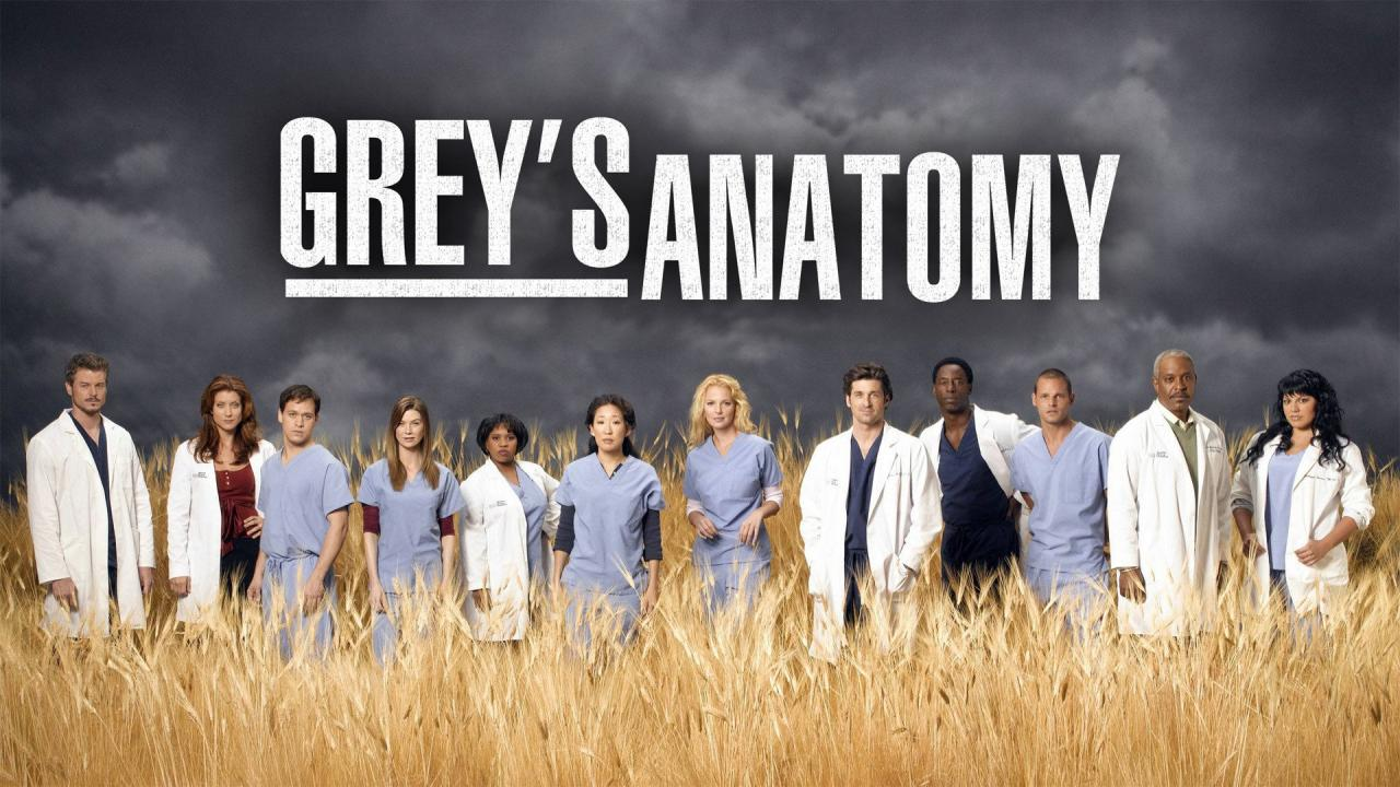 123series Hd Watch Greys Anatomy Season 14 Episode 23 Online