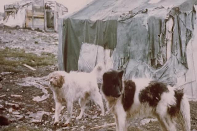 Saimaqatigiiniq  (Peace with Past Opponents)