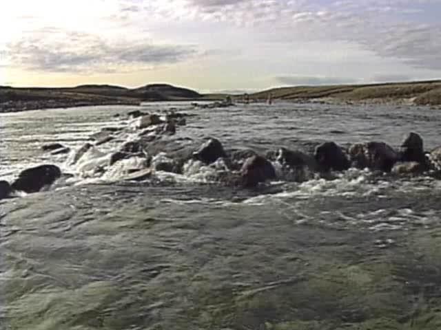 Saputi (Fish Traps) 1993