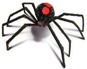 Spookiespider-425