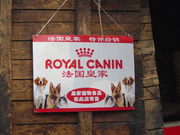 Royalcanin