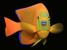 Holacanthus clarionensis (Clarion Angelfish)