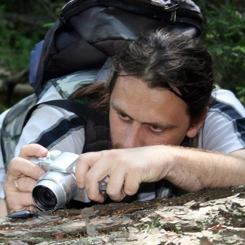 Dmitry Telnov photographing the rare and protected saproxylic longicorn beetle Ergates faber, in Latvia, 2007. Photo: R. Matrozis.