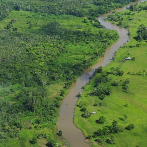 Brazil's overall commitment to restoration totals 22 million hectares. Photo: Neil Palmer (CIAT).