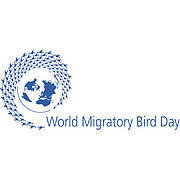 World Migratory Bird Day (photo: World Migratory Bird Day)