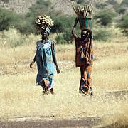 Women on their way to market, Mali. Photo: Intu Boedhihartono
