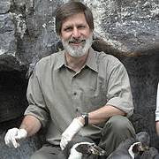 Robert Lacy with Humboldt Penguins (Spheniscus humboldti). Photo: Jim Schulz - Chicago Zoological Society