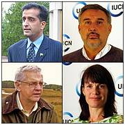 Vice-Presidents of IUCN 2013-2016: Mr. Malik Amin Aslam Khan, Pakistan; Mr. Miguel Pellerano, Argentina; Dr John Robinson, USA; and Ms Marina von Weissenberg, Finland. (Top row then bottom row l-r) Photo: IUCN