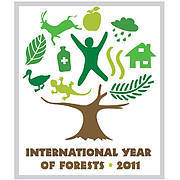 The United Nations General Assembly declared 2011 as the International Year of Forests to raise awareness on sustainable management, conservation and sustainable development of all types of forests. Photo: www.un.org/en/events/iyof2011/