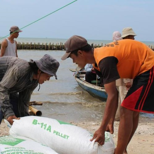 KPAPPD builds semi permeable barriers in Pulau Dua. Photo: © IUCN Indonesia.